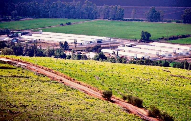 מאבק על הקרקע. מבנים חקלאיים|צילום: החברה לפיתוח הגליל