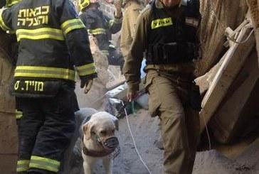 מאסר כבד לנאשמים בפיצוץ בניין בעכו