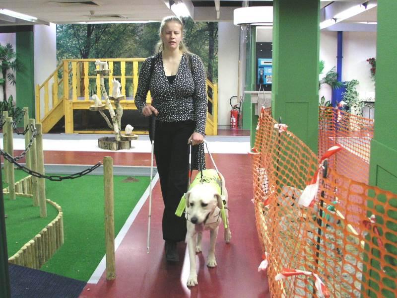 חוק וסדר. כלב צילום: ויקיפדיה